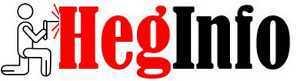 HegInfo Hegesztéstechnika info